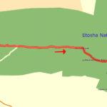 22. Juni Etosha Dolomite Camp - Camp Okaukuejo