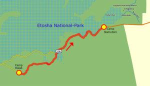 24. Juni Etosha Camp Halali - Camp Namutoni klein